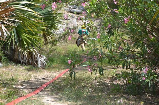 bermuda fire 2011 (5)