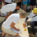 BELCO Rubber Duck Derby Bermuda June 5 2011-1-35