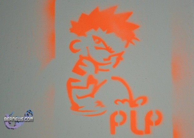 anti plp graffitt bermuda (1)