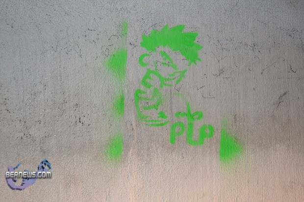 anti plp graffitt bermuda (2)