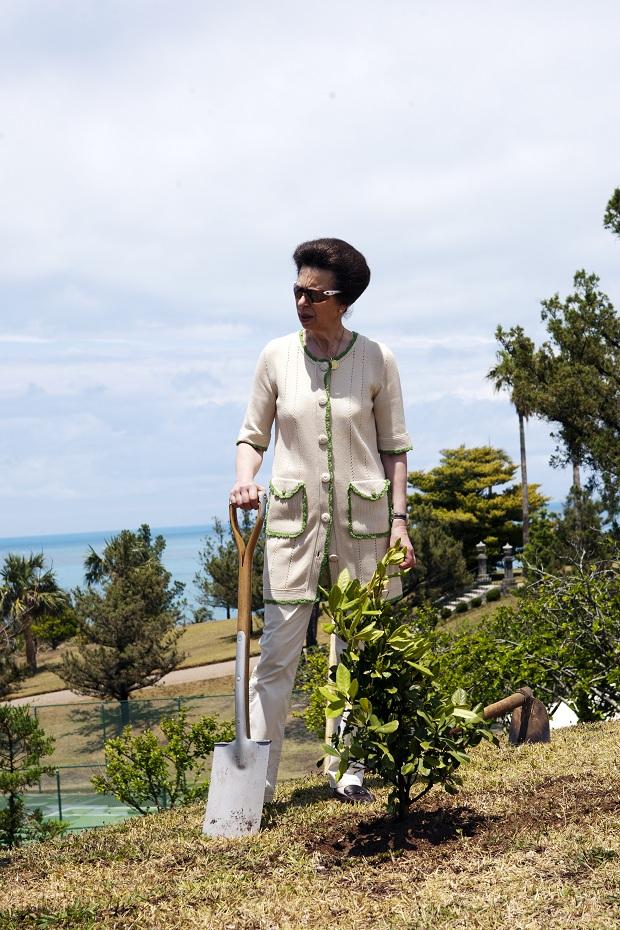 princess anne in bermuda 2011