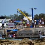 2011 non mariners bermuda g (6)