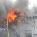 bermuda fire august 2011 HWP (17)