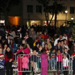 Tree Of Lights - Tree Lighting Ceremony Bermuda November 25 2011-1-8