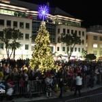 Tree Of Lights - Tree Lighting Ceremony Bermuda November 25 2011-1