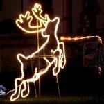 Christmas Decorations Lights Lighting Bermuda December 2011-1-39
