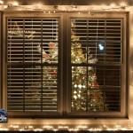 Christmas Decorations Lights Lighting Bermuda December 2011-1-60
