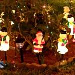 Christmas Decorations Lights Lighting Bermuda December 2011-1-91