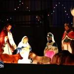 Christmas Decorations Lights Lighting Bermuda December 2011-1-95