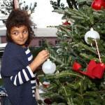Premier's Tree Lighting Ceremony Bermuda December 3 2011-1-5