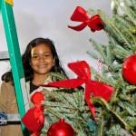 Premier's Tree Lighting Ceremony Bermuda December 3 2011-1-9