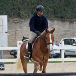 Horse Jumping Show Bermuda January 28 2011-1-13