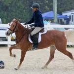Horse Jumping Show Bermuda January 28 2011-1-14
