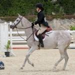 Horse Jumping Show Bermuda January 28 2011-1-17