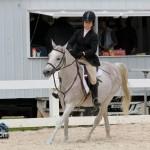 Horse Jumping Show Bermuda January 28 2011-1-19