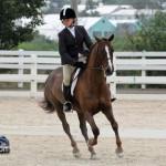 Horse Jumping Show Bermuda January 28 2011-1-21