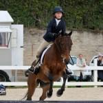 Horse Jumping Show Bermuda January 28 2011-1-6