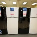 Sears Opening Bermuda March 7 2012-1-13