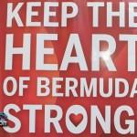 Walking Expo Bermuda April 3 2012-1-28