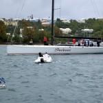 2012 newport bermuda race finish (45)