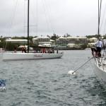 2012 newport bermuda race finish (46)