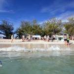 Fripper Turtle Release Clearwater Beach Bermuda August 14 2012 (12)