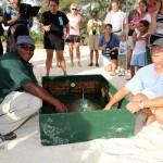 Fripper Turtle Release Clearwater Beach Bermuda August 14 2012 (15)