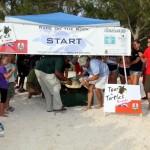 Fripper Turtle Release Clearwater Beach Bermuda August 14 2012 (16)