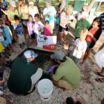 Fripper Turtle Release Clearwater Beach Bermuda August 14 2012 (8)