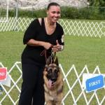 Bermuda Kennel Club Dog Show, October 20 2012-1-29