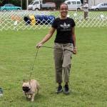 Bermuda Kennel Club Dog Show, October 20 2012-1-33