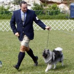 Bermuda Kennel Club Dog Show, October 20 2012 (11)