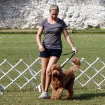 Bermuda Kennel Club Dog Show, October 20 2012 (63)