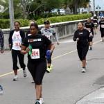 Bacardi 8K Run Walk Bermuda, November 25 2012 (4)
