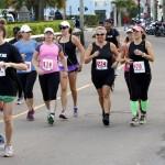 Bacardi 8K Run Walk Bermuda, November 25 2012 (43)