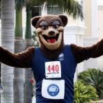 Bacardi 8K Run Walk Bermuda, November 25 2012 (47)