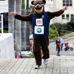 Bacardi 8K Run Walk Bermuda, November 25 2012 (88)