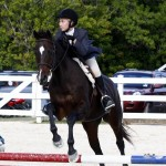 Inwood Hunter Jumper Show Horses Bermuda Equestrian, November 25 2012 (1)