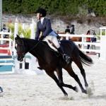 Inwood Hunter Jumper Show Horses Bermuda Equestrian, November 25 2012 (2)