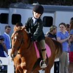 Inwood Hunter Jumper Show Horses Bermuda Equestrian, November 25 2012 (22)