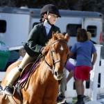 Inwood Hunter Jumper Show Horses Bermuda Equestrian, November 25 2012 (23)