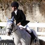 Inwood Hunter Jumper Show Horses Bermuda Equestrian, November 25 2012 (25)