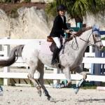 Inwood Hunter Jumper Show Horses Bermuda Equestrian, November 25 2012 (29)