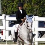 Inwood Hunter Jumper Show Horses Bermuda Equestrian, November 25 2012 (30)