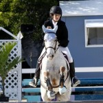 Inwood Hunter Jumper Show Horses Bermuda Equestrian, November 25 2012 (33)