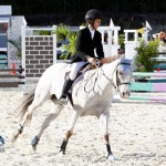 Inwood Hunter Jumper Show Horses Bermuda Equestrian, November 25 2012 (34)