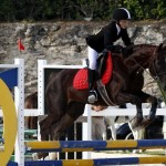 Inwood Hunter Jumper Show Horses Bermuda Equestrian, November 25 2012 (38)