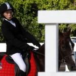 Inwood Hunter Jumper Show Horses Bermuda Equestrian, November 25 2012 (39)