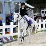 Inwood Hunter Jumper Show Horses Bermuda Equestrian, November 25 2012 (4)