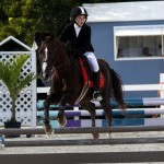 Inwood Hunter Jumper Show Horses Bermuda Equestrian, November 25 2012 (43)